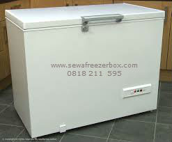 Sewa Freezer Box di Madiun